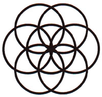 how to draw the sacred flower of life